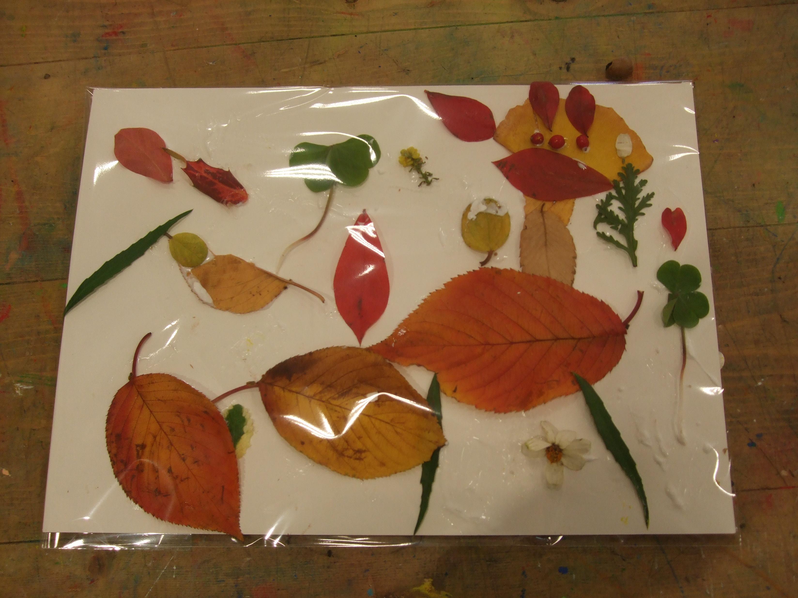 葉っぱでアート