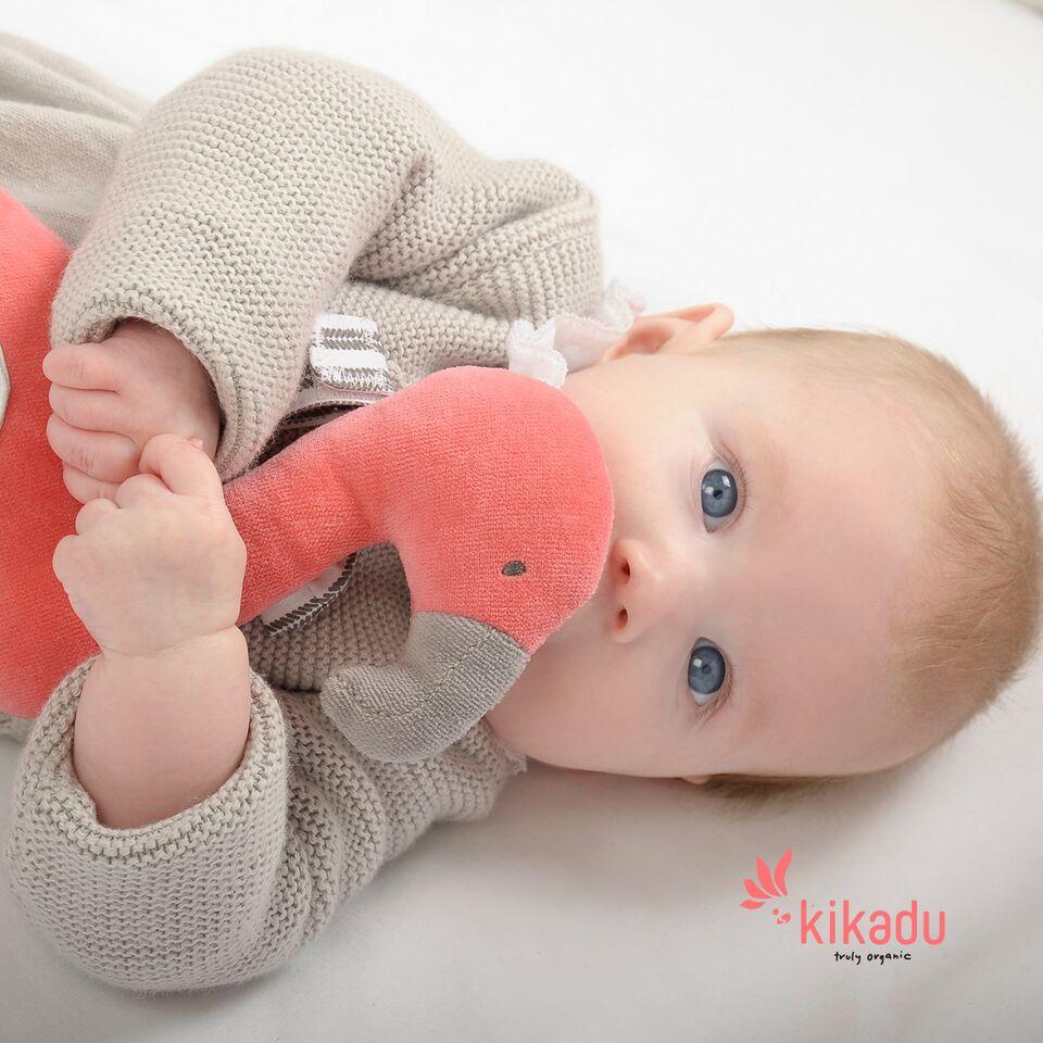 「赤ちゃんの未来もやさしく包み込む kikadu(キカドゥ)」特集公開のお知らせ