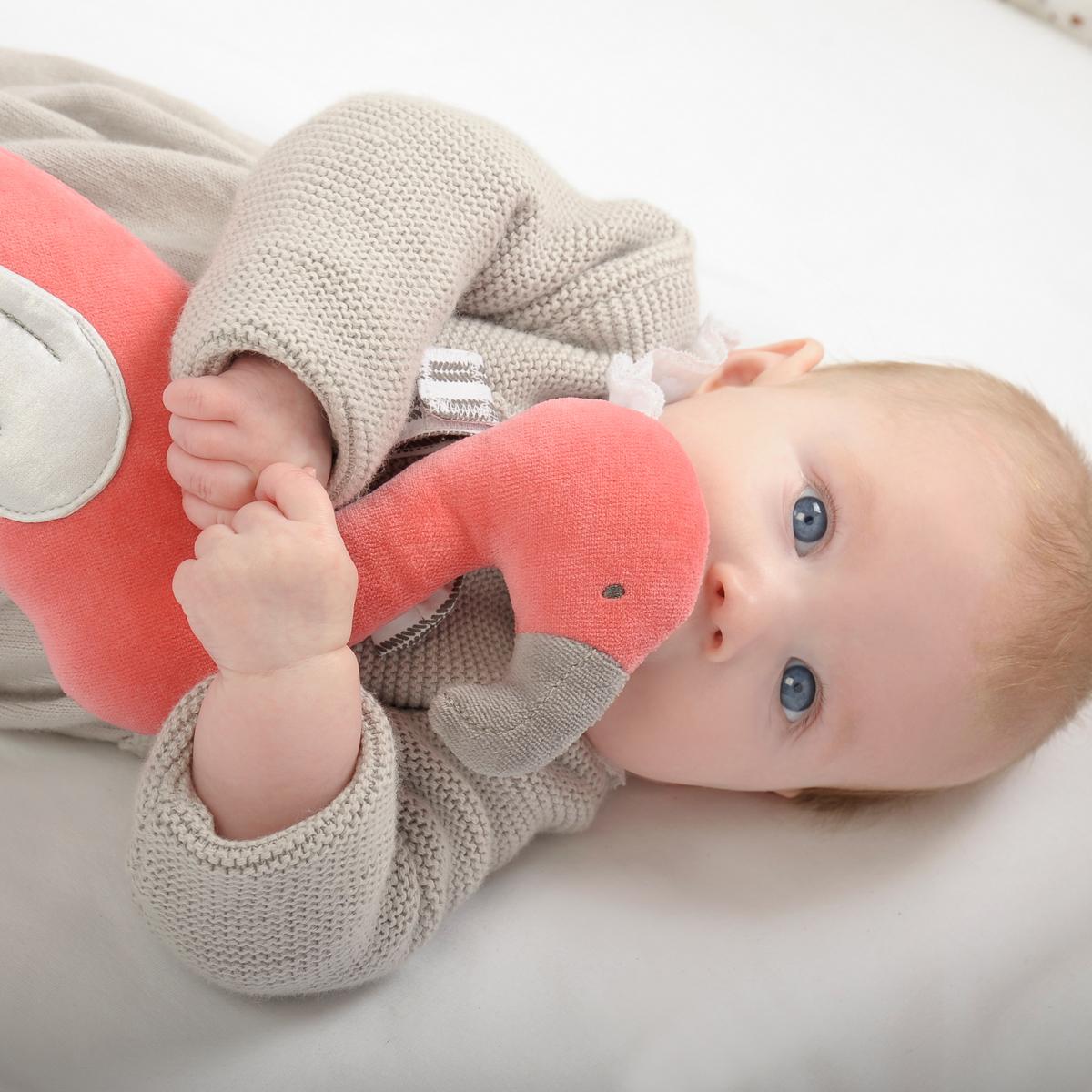 赤ちゃんの未来もやさしく包み込むオーガニック・コットン用品